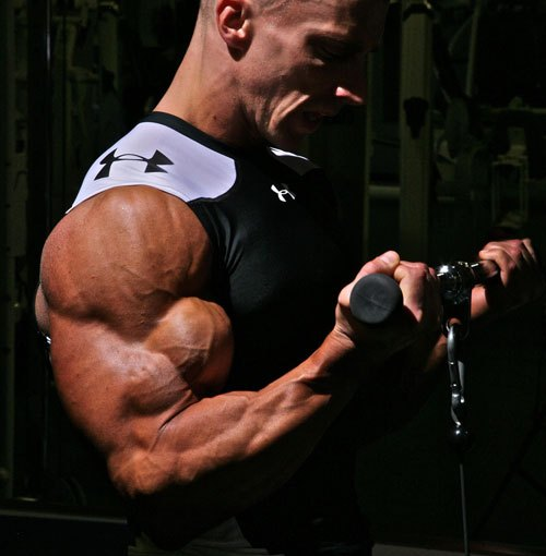 Workout Of The Week November 15th: Biceps For Dayzz