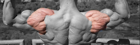 Workout of the Week 12/14: Alpha Deltoid