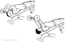 Decline_EZ_Bar_Triceps_Extension