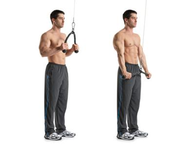 8-rope-tricep-pressdowns